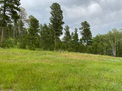 TBD ROSE PLACE, Deadwood, SD 57732 - Photo 1