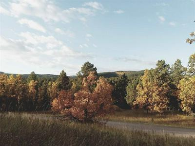 TBD TICKLEGRASS ROAD, Deadwood, SD 57732 - Photo 1