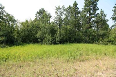 TRACT 30A PASQUE LOOP, Spearfish, SD 57783 - Photo 2