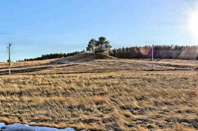 LOT 17 SIDNEY PARK ROAD, Custer, SD 57730 - Photo 1