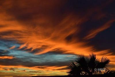 890 KITTY HAWK DR, Mesquite, NV 89027 - Photo 2