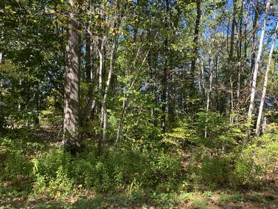 29 DONICA RD, York, ME 03909 - Photo 2