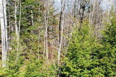 64 GRANDVIEW RD, Conway, NH 03818 - Photo 2