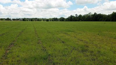 0 ANCHOR LAKE RD #LOT 4, Carriere, MS 39426 - Photo 2