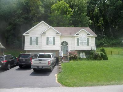 173 DAVIDSON DR, BLUEFIELD, VA 24605 - Photo 1