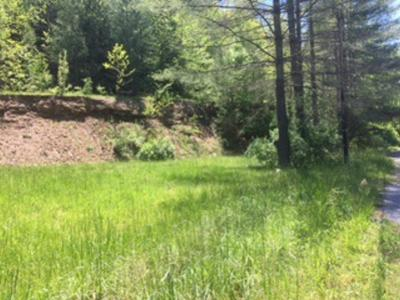 00 WELCH PINEVILLE ROAD, WELCH, WV 24801 - Photo 2