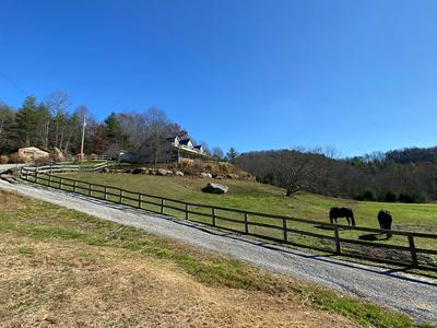 485 EDGEHILL RD, LERONA, WV 24712 - Photo 1