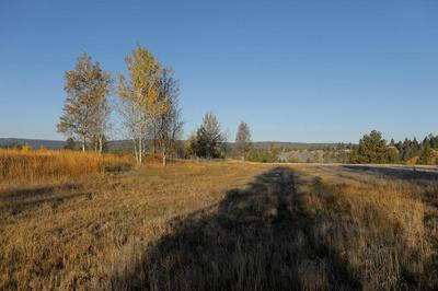 LOT 11 RIVER RANCH ROAD, McCall, ID 83638 - Photo 2