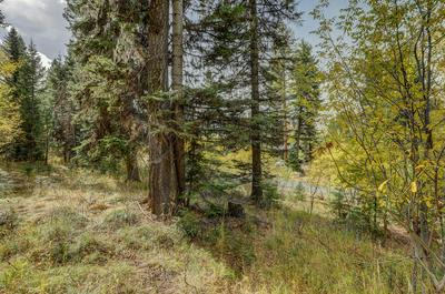 1150 BELL FLOWER PL, McCall, ID 83638 - Photo 1