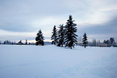 LOT 27 RIVER RANCH ROAD, McCall, ID 83638 - Photo 2