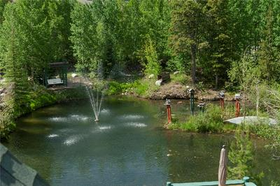 200 N 7TH AVE, FRISCO, CO 80443 - Photo 2