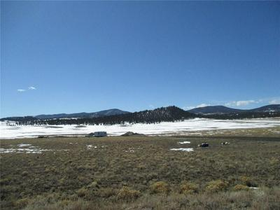 150 BUGGY CT, HARTSEL, CO 80449 - Photo 2