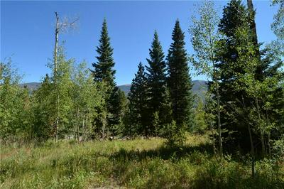 1445 GOLDEN EAGLE RD, SILVERTHORNE, CO 80498 - Photo 2
