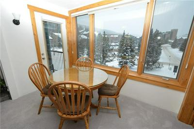 88 GULLER RD # 307, COPPER MOUNTAIN, CO 80443 - Photo 2