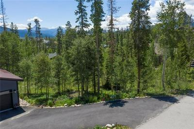 86 SPRING BEAUTY DR, SILVERTHORNE, CO 80498 - Photo 2