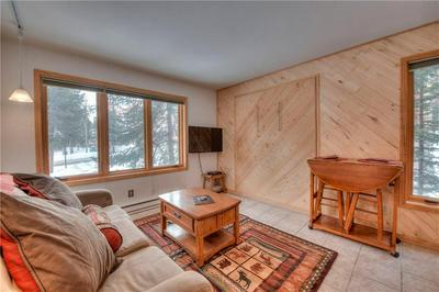 550 FOUR OCLOCK RD # 1, BRECKENRIDGE, CO 80424 - Photo 1