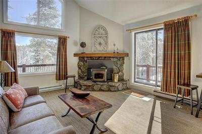 69 SNOWSHOE CIR, BRECKENRIDGE, CO 80424 - Photo 2