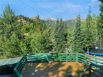 182 ROBBERS NEST DR, BRECKENRIDGE, CO 80424 - Photo 1