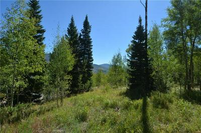 1445 GOLDEN EAGLE RD, SILVERTHORNE, CO 80498 - Photo 1