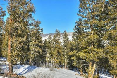 3726 MIDDLE FORK VIS, FAIRPLAY, CO 80440 - Photo 1