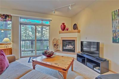 720 LAKEPOINT DR # B1, FRISCO, CO 80443 - Photo 2