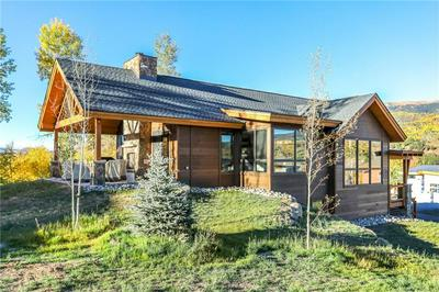 815 MARYLAND CREEK RD, SILVERTHORNE, CO 80498 - Photo 2