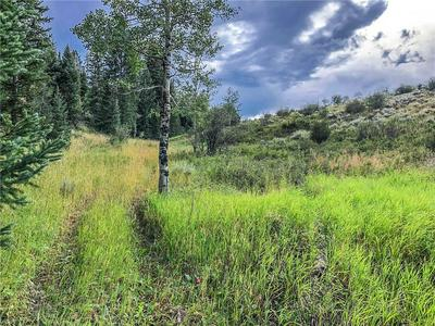 TBD COUNTY ROAD 373, PARSHALL, CO 80468 - Photo 2