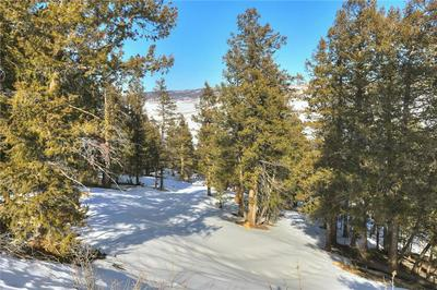 3726 MIDDLE FORK VIS, FAIRPLAY, CO 80440 - Photo 2