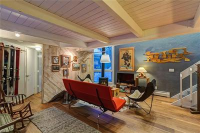 205 S HARRIS STREET C, Breckenridge, CO 80424 - Photo 2