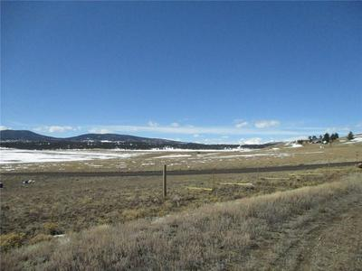 150 BUGGY CT, HARTSEL, CO 80449 - Photo 1