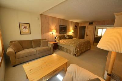 88 GULLER RD # 205, COPPER MOUNTAIN, CO 80443 - Photo 2
