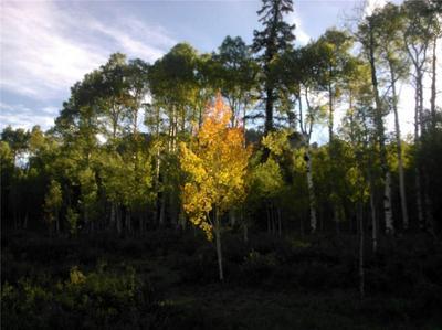 940 OURAY TRL, JEFFERSON, CO 80456 - Photo 1