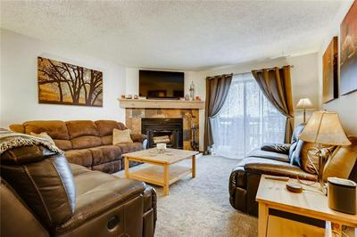 904 MEADOW CREEK DR # 106, FRISCO, CO 80443 - Photo 2