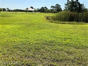 18900 CREEK BRIDGE CT, ALVA, FL 33920 - Photo 2