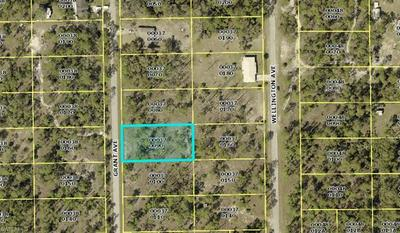 2306 GRANT AVE, ALVA, FL 33920 - Photo 2
