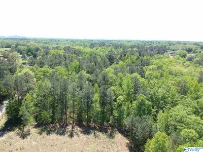 0 ROAN ROAD, HARTSELLE, AL 35640 - Photo 1