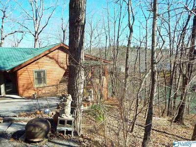 990 COUNTY ROAD 839, Mentone, AL 35984 - Photo 2