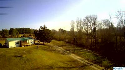 1262 COUNTY ROAD 1815, Joppa, AL 35087 - Photo 2