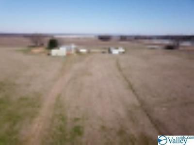 8374 COUNTY ROAD 222, TRINITY, AL 35673 - Photo 2