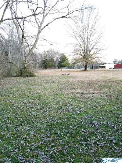 12758 MARKET ST, Moulton, AL 35650 - Photo 2