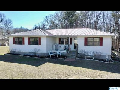 399 COUNTY ROAD 191, FACKLER, AL 35746 - Photo 2