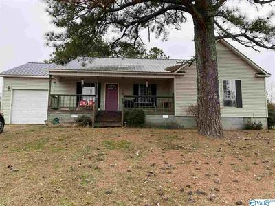 110 BLUE BEND RD, Albertville, AL 35951 - Photo 1