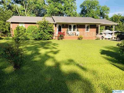 65 WOODLAND AVE, TRINITY, AL 35673 - Photo 1