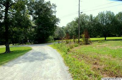 DAWSON ROAD, FYFFE, AL 35971 - Photo 2