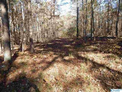10 AC ROAD 9002, Mentone, AL 35984 - Photo 1