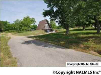11945 AL HIGHWAY 69 N, Baileyton, AL 35019 - Photo 2