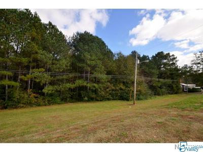 0 HIGHWAY 31, HANCEVILLE, AL 35077 - Photo 2
