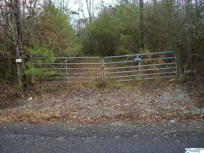 COUNTY ROAD 417, SECTION, AL 35771 - Photo 1