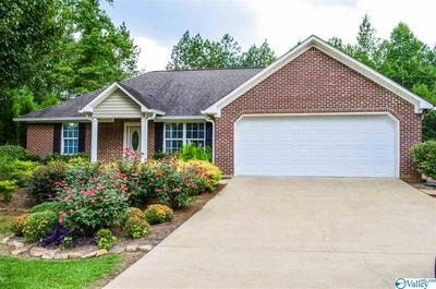 115 BOWMAN DR, LEESBURG, AL 35983 - Photo 1