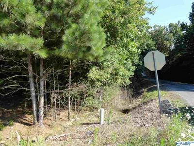O COUNTY ROAD 418, DUTTON, AL 35744 - Photo 2